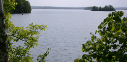 Pelican Lake view