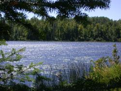 Busties Lake lot
