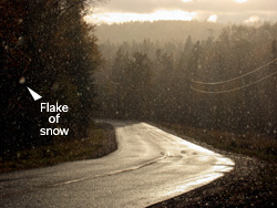Flake of snow