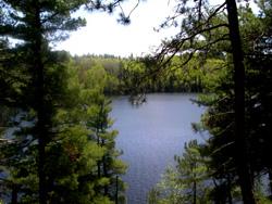 Elbow Lake lot